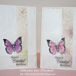 Beautiful Birthday with Butterfly-collection