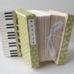 rocno-delo-unikat-voscilnica-posebna-darilna-škatla-denarno-darilo-harmonika-zelena-leva-stran-klaviatura