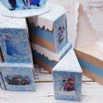 rocno-delo-unikat-praznovanje-torta-otroška-rojstni-dan-frozen-2